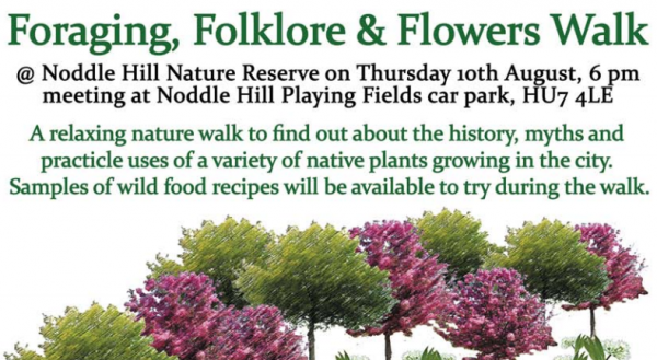 Foraging, Folklore & Flowers Walk at Noddle Hill Nature Reserve, Hull