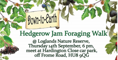 Hedgerow Jam and Foraging Walk at Loglands Nature Reserve, Hull