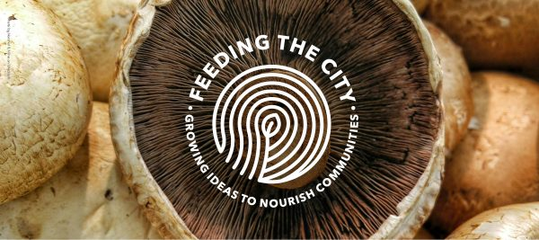 Hull: Feeding the city - a workshop for potential business start ups